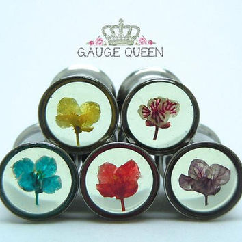 Single or Double Flare Plugs / Gauges. Real Flower Tunnels. 2g / 6mm, 0g / 8mm, Surgical Stainless Steel by Gauge Queen on Etsy
