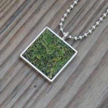 Moss Necklace, Eco Friendly, Terrarium Necklace, Terrarium Jewelry, Living Plant Jewelry, Earth Day Necklace, Garden Gift