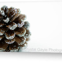 Pine Cone Christmas Card Brown Christmas Greeting Blank Note
