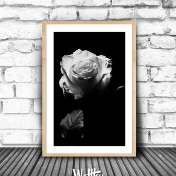 Rose print, Black and White Photography, White Rose Poster, Modern decor, Rose Art, Romantic, Romance,  Love, Printable, minimalist, print