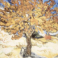 Mulberry Tree by Vincent Van Gogh Fine Art Print