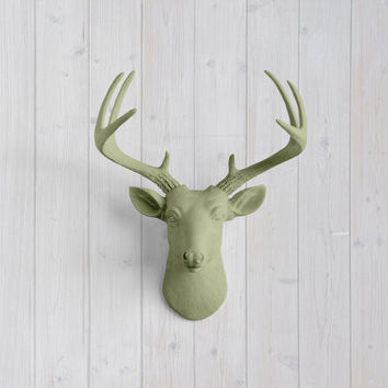 The MINI Virginia Sage Green Faux Taxidermy Resin Deer Head Wall Mount | Sage Green Stag w/ Colored Antlers