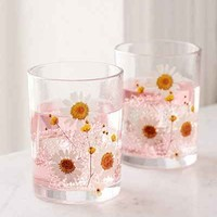 Pressed Daisy Glasses Set - Urban Outfitters