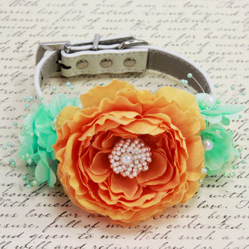 Pastel Orange and Aqua Mint wedding dog collar, Floral Dog Collar