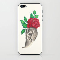 Vulture Skull iPhone & iPod Skin by haleyivers