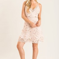 Emily Blush Lace Mini Dress