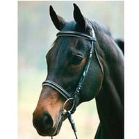 Henri De Rivel Dressage Bridle