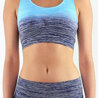 Ombre Sports Bra- Navy
