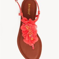 A'GACI Steno 69 Flower Trim T Strap - SANDALS
