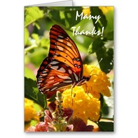 Monarch Butterfly on Lantana, Thank You Card