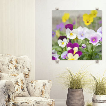 Pansies Print - Flower Photo - Purple Yellow Pansy- Home Decor