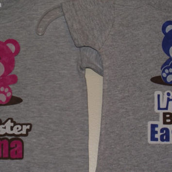 Big Sister and Big Brother Teddy Bear Siblings Family Custom T-Shirt Personalized Fabric Applique