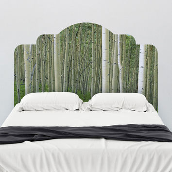 Paul Moore's Birch In Uncompahgre National Forest Headboard wall decal