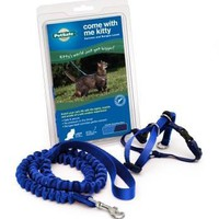 Kitty Harness & Bungee Lead Blue - Large