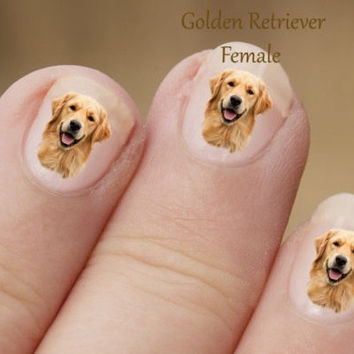 Golden Retriever Nail Art