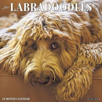 Just Labradoodles Wall Calendar, Labradoodle by Willow Creek Press