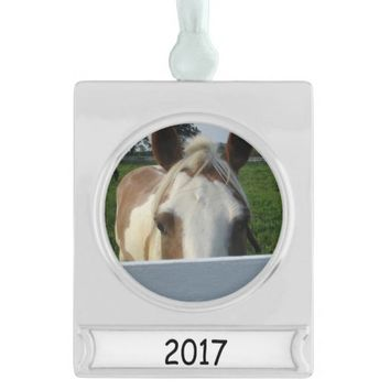 Peek a Boo Palomino Horse Behind Fence Silver Plated Banner Ornament