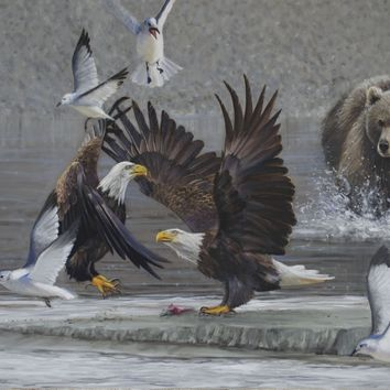 The Last Scrap - Eagles and Alaskan Brown Bear - 24x36 Oil on canvas