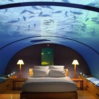 Maldives Hotels - Holidays to