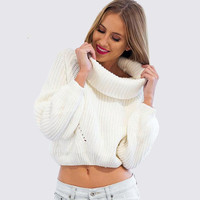 High Collar Long Sleeve Sweater