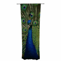 "Angie Turner ""Proud Peacock"" Blue Animals Decorative Sheer Curtain"