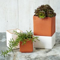 Self-Watering Cult Pots