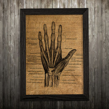 Anatomy print Biology art Hand poster Medical print BLP496