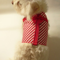 RockinDogs Holiday Present Red and White Candy Stripe Dog Harness