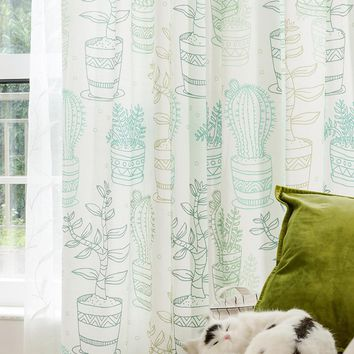 Drapes with Cactus Planters