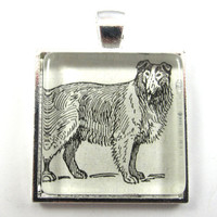 Collie Vintage Dictionary Illustration Pendant, in Glass Tile Square