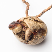 Collectible figurine Hand carved Wooden Pendant Turtle in the egg Necklace OOAK turtle miniature Hyperrealistic art Unusual Necklace