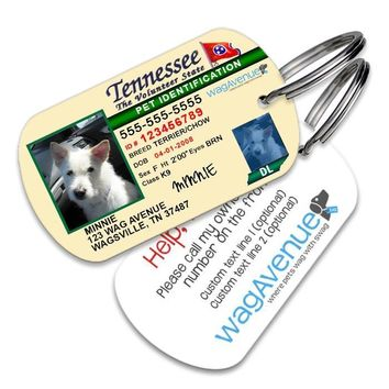 Tennessee Driver's License Pet Tag