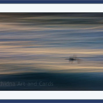 Bird Abstract Photography, Ethereal, Monochromatic Blue Photograph, Timeless Flight