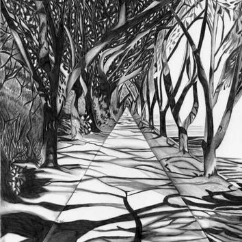 Shop Black And White Landscape Drawings On Wanelo
