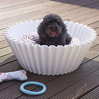 Cupcake Case Dog Bed