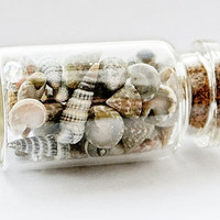 Beach In A Bottle, Shell Necklace, Shells In A Bottle, Beach Pendant, Sea Shells, Beach Terrarium