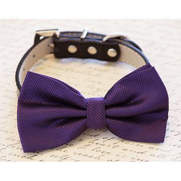 Purple Dog Bow tie attached to Collar, Purple Wedding accessory, Dog Lovers
