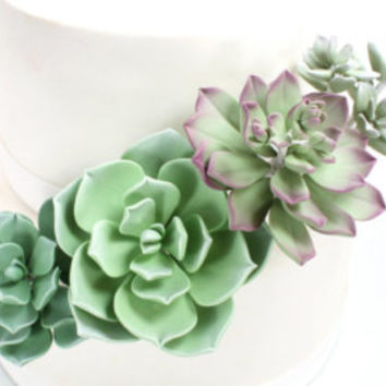 Wedding Cake Succulent Green & Purple Sugar Paste Cake Topper by lil sculpture- Set of 2