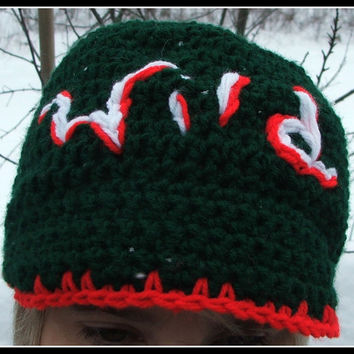 Crochet MN Wild inspired hat. Brim Hat. Minnesota Wild. Hockey. Made by Bead Gs on ETSY. Wild. Green and Red Hat. Brimmed.