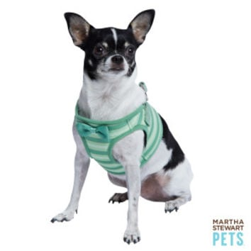 Martha Stewart Pets® Fresh Meadows Striped Harness | Harnesses | PetSmart