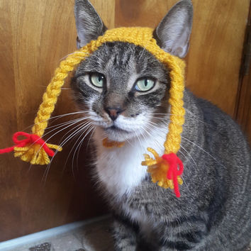 Braided Pigtail Cat Hat