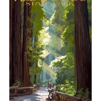 Redwoods State Park - Pathway in Trees Art Print by Lantern Press at Art.com