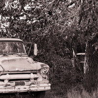 Rustic Country Farm Truck, Signed Fine Art Photography Giclee Print