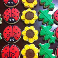 Lady Bug Flower Leaf decorated cookies 3Dz mini