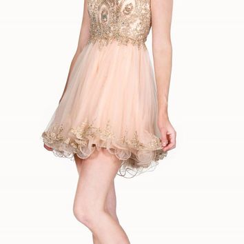Bateau Neck Champagne Embroidered Homecoming Short Dress Tulle