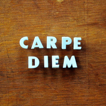 Carpe Diem - Vintage Ceramic Push Pins