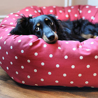 Dotty Donut Dog Beds