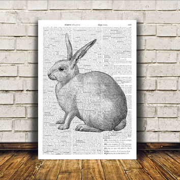Dictionary print Rabbit poster Modern decor Animal art RTA182