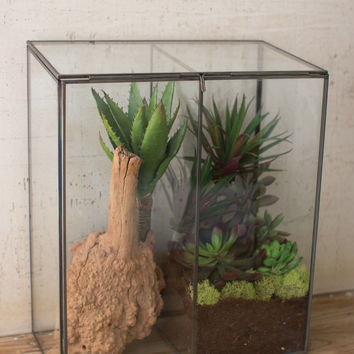 Large Slanted Top Glass & Metal Terrarium with Divider