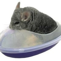 Chinchilla Bath